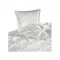 Bett + Kissen-Set schwer entflammbar